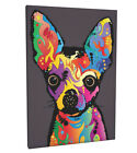 Chihuahua Box Canvas and Poster Print (87)