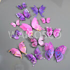 3d Twin Wings Home Butterfly Wall Stickers Decorations Butterflies