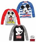 Boys Disney Mickey Mouse T Shirt Top Long Sleeve Grey Blue Ages 2 3 4 5 6 7 8