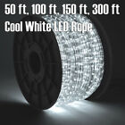 50' 100' 150' 30' Cold-hearted White LED Rope Light 2 Wire 110V Outdoor Christmas Party