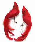 9 inch Feather LOVE birds couple, RED, wire feet, Set of 2