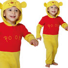 Baby Disney Winnie the Pooh Costume Fancy Dress Licensed 0-18 Months Amscan