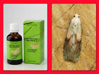 Siberian wax moth extract! SUPER DETOX! 100ml Collected in the wild Altai! BEST!