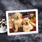 Best 15 inch HD  LED Digital Photo Picture Frame MP3 MP4 Movie+Remote Control#TH