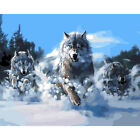 Wolf Fox Animal Paint By Number Kit DIY Acrylic Oil Painting On Canvas Art Decor