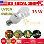 5.0 10.0 UVB 13W Reptile Light Bulb UV Glow Lamp for Vivarium Terrarium TBH