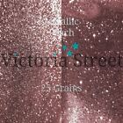 "Victoria Street Glitter - Metallic Peach - Fine 0.008"" / 0.2mm (Rose Gold Pink)"