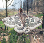 American Christmas Ladies Butterfly Wings People's Attention Pumpkin Shawls Cape