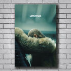 beyonce visual album buy - Z4553 Beyonce Lemonade Visual Album 14x21 24x36 inch Silk Poster Wall Art