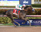 ARROGATE 17 RIDDEN BY MIKE SMITH (HORSE RACING) KEYRINGS-MUGS-PHOTO PRINTS