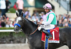 ARROGATE 27 RIDDEN BY MIKE SMITH (HORSE RACING) KEYRINGS-MUGS-PHOTO PRINTS