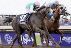 ARROGATE 45 RIDDEN BY MIKE SMITH (HORSE RACING) KEYRINGS-MUGS-PHOTO PRINTS