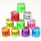 50pcs D8mm*H11mm White inner Circle Customized Racing Pigeon leg bands rings