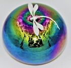 Neo Art Glass iridescent rainbow paperweights sterling silver dragonfly K.Heaton