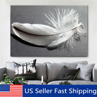 Feather Canvas Abstract Nature Grey White Landscape Wall Art Picture Home Decor