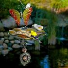 Butterfly Bliss Bird Bath/Feeder