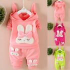 Cute Rabbit Toddler Baby Girl Hooded Long Sleeve Pullover To