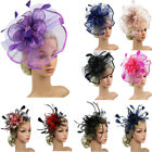 Women's Hair Accessory Clip Feather Mesh Wedding Bridal Party Fascinator Hat