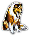 Long Haired Collie Breed Dog Car Bumper Sticker Decal- 3'', 5'' or 6''