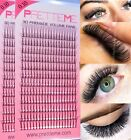Total 0.10 3D Pre-made Russian Volume fans Lashes C &amp; D Curl lash Extension kit <br/> High Quality*Buy 3 Get 4th FREE* Free NextDay Delivery