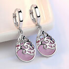 Women Ladies Chic Moonlight Opal Tears Totem Drop Earrings Pendant Jewelry B