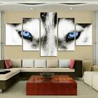 Canvas Wall Art HD Painting 5 Panel Animal Wolf Blue Eyes Printed Framed Unfr...