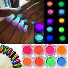 11 Colors Neon Phosphor Nail Art Pigment Powder Glitter  Decor Tips