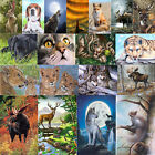 Kyпить 30*40cm 5D DIY Full Drill Diamond Painting Animal Cross Stitch Embroidery Craft на еВаy.соm
