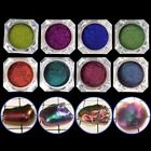 Mirror Pearl Powder Epoxy Resin Glitter Chameleon Pigment Resin Jewelry Making
