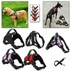 Pet Dog Vest Harness Leash Collar Set with Safety Pull Adjustable Size S M L XL