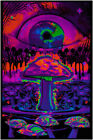 Z-262 Trippy Magic Mushrooms Eye Art Silk Poster Fantasy Mind Custom