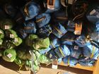 CAMPING - TENT - JOB LOT - PALLET - WHOLESALE - CLEARANCE - CHEAP - TENTS