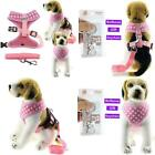 Bolbove Pet Adjustable Lovely Dots Mesh Harness And Leash Set For Cats  Dogs