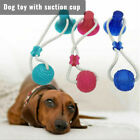 Pet Molar Bite Toy Dog Tug Rope Ball Chew Toys Tooth Cleaning With Suction Cup