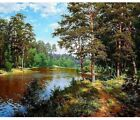 Paint By Numbers Adults kids Forest River DIY Painting Kit 40x50CM Canvas
