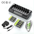 AA AAA Rechargeable Batteries NiMH 1.2V + AA/AAA Battery LCD Charger Kit 8Pack