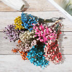 Home Decoration Mini Babysbreath Real Flower Natural Dried Bouquets Plant Stems