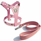 STAFFORDSHIRE DOG FACE HARNESS & LEATHER LEAD SET FITTED WITH CHROME IN 8 COLORS