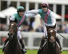 FRANKEL RIDDEN BY TOM QUEALLY 22 (HORSE RACING) PHOTO PRINT