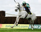 NACARAT RIDDEN BY PADDY BRENNAN 02 (HORSE RACING) PHOTO PRINT