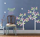Wall Decor Decal Sticker Coocoo Removable Large Bird Twin Tree 3 Colors