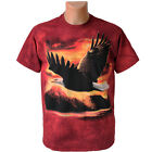 The Mountain T-Shirt Adler im Abendrot S - XXL