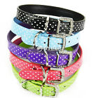 New Candy Color Polka Dot Rhinestone Buckle Pet Dog Collar Synthetic Leather DZ8