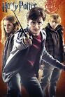 New Hermione, Harry & Ron Harry Potter and The Deathly Hallows Poster