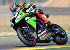 TOM SYKES 13 (SUPERBIKES 2013) PHOTO PRINT