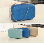 New Women's Chain Retro Hard Glitter Shoulder Dinner Clutch Handbag Box Wallet
