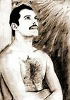 FREDDIE MERCURY 02 (QUEEN) GLOSSY ART PRINT‏