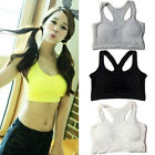 Womens Seamless Removable Padded Bra Leisure Top Vest Sports Bras