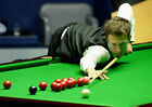 JUDD TRUMP 06 (SNOOKER) PHOTO PRINT