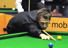 JUDD TRUMP 13 (SNOOKER) PHOTO PRINT